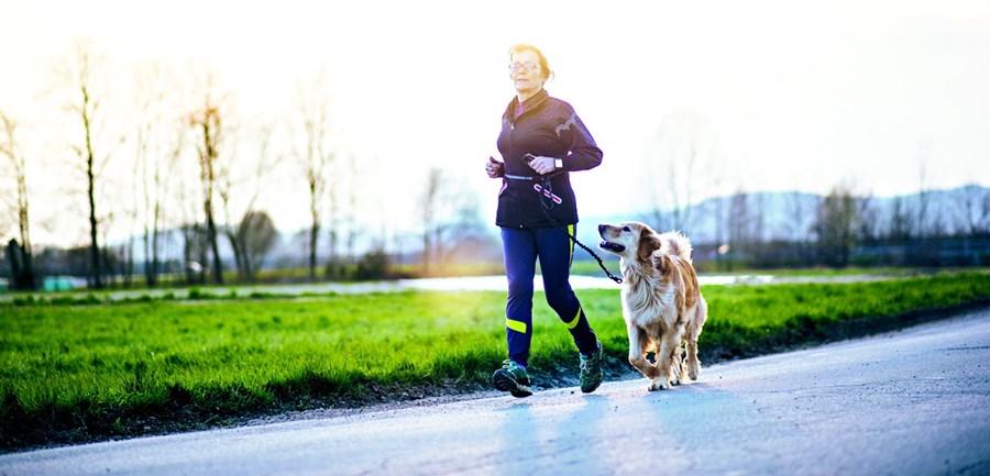 Os animais de companhia podem ser usados para estimular o convívio social dos doentes, bem como a prática de exercício físico
