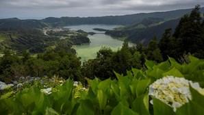 Vento forte deixa ilhas dos Açores sob aviso laranja