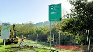 Skatepark de Guimarães vai custar 175 mil euros