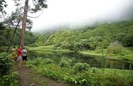 Poço da Ribeira do Ferreiro, ilha das Flores