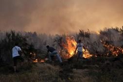 Populares ajudaram com todos os meios os bombeiros em Vila Nova de Paiva