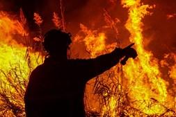 Bombeiro combate incêndio