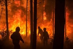 Bombeiros combatem o fogo no Pinhal de Leiria, Marinha Grande