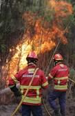 Incêndio pinhal urbana das Gaeiras, Marinha Grande