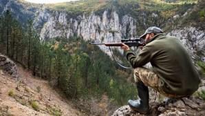 Proibido caçar em 94 concelhos até maio de 2018