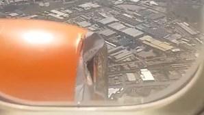 Pássaro choca com avião e danifica motor