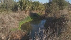 Cursos de água poluídos em Barão de São João