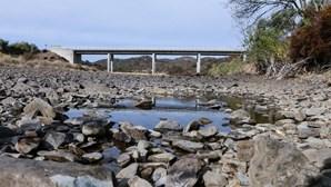 Agricultores do Algarve defendem nova barragem