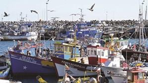 Pesca de cerco à sardinha proibida