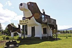 Dog Bark Park Inn, nos EUA