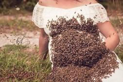 Emily Mueller fez uma sessão fotográfica com 20 mil abelhas