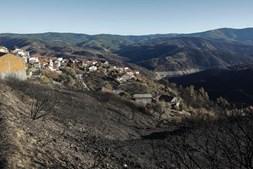 Floresta devastada pelas chamas em Vale Serrão, Pampilhosa da Serra