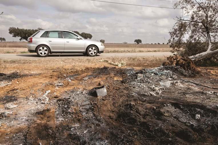 BMW onde seguiam as vítimas incendiou-se após embater em várias oliveiras
