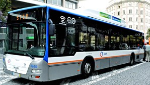 STCP reforça as seis linhas de autocarro de maior procura no Porto