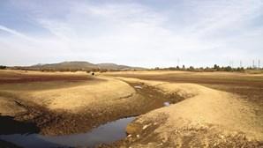 Albufeira em Montalegre sem condições para utilização balnear devido a salmonela