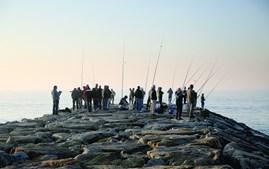 A zona de Ovar é conhecida por ser uma terra de pesca