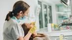 Precisa de ir ao dentista? Conheça as novas regras a que os profissionais estão sujeitos para lidar com a pandemia