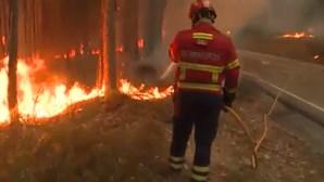 Mais de 100 bombeiros combatem fogo em zona florestal na Póvoa de Lanhoso