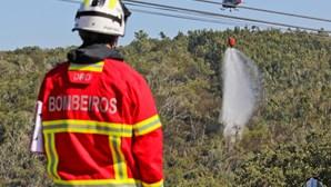 Prevenção face aos incêndios reforçada face a onda de calor com máximos históricos