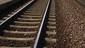 Ladrão com carro furtado na Áustria corta comboios em Setúbal