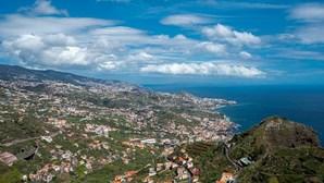 Câmara do Funchal vacinou 3.100 animais domésticos em seis campanhas antirrábicas