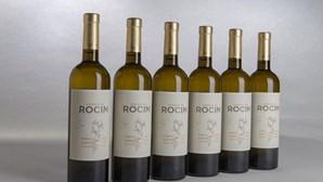 Na Herdade do Rocim os detalhes contam para vender qualquer vinho