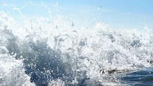 Canceladas viagens marítimas entre Madeira e Porto Santo domingo