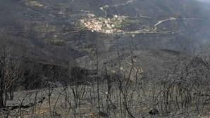 Estado põe estagiários à procura de donos das terras destruídas pelos incêndios