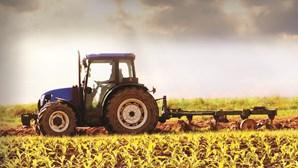 Prémio Nacional de Agricultura volta a valorizar agricultores