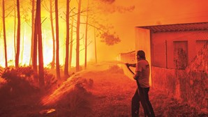 Governo recusou duas vezes reforço de meios nos fogos