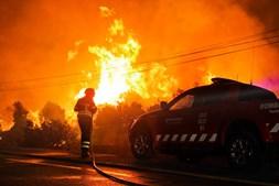 Incêndio de 2016 fustigou a floresta em Arouca e São Pedro do Sul. Conclusões foram remetidas ao Ministério Público