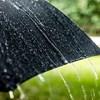Chuva e trovoada colocam dois distritos de Portugal continental sob aviso amarelo