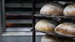 Investigadores encontram restos de pão com mais de 14 mil anos