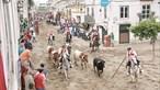 Cinco dias de festa rija na Azambuja