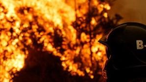 Incêndios em Viseu mobilizaram cerca de 100 operacionais