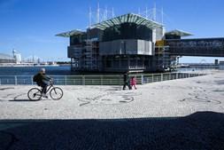 Oceanário de Lisboa, inaugurado durante a Expo'98, recebeu no espaço de 20 anos mais de 23 milhões de visitantes