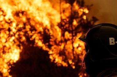 Registados 7610 fogos que consumiram 27 118 hectares de área ardida este ano