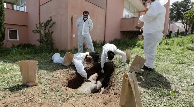 Arqueologia forense: corpos que falam e desvendam crimes