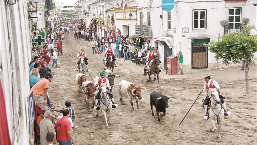 Feira de maio começa no dia 24 na vila ribatejana de Azambuja
