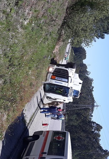 Camião tomba na A1 a na zona de Pombal