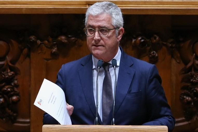 Fernando Negrão, líder parlamentar do PSD