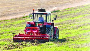 Portugal tem novo instrumento financeiro para apoiar agricultores