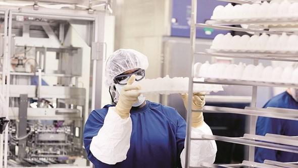 Injeção protege contra quatro estirpes da gripe