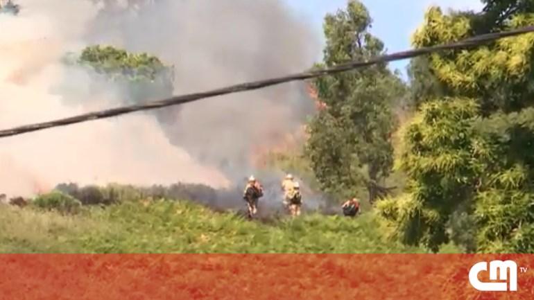 bombeiros odivelas correio da manha anuncios