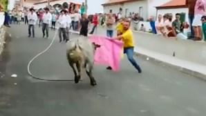 Homem leva criança ao colo para enfrentar touro nos Açores