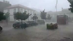 Ministério da Agricultura avalia estragos da tempestade em Vila Pouca de Aguiar