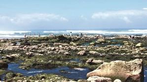 O centro do País com mar à vista