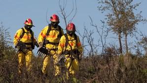 Operadores de sala e bombeiros da Força Especial passam a integrar quadros da Proteção Civil
