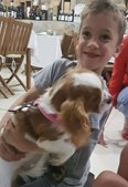 Morreu menino de seis anos que ficou preso em piscina de Azeitão