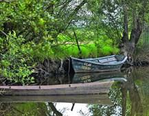 Parque do areal, localizado em Angeja, situa-se bem junto ao Rio Vouga